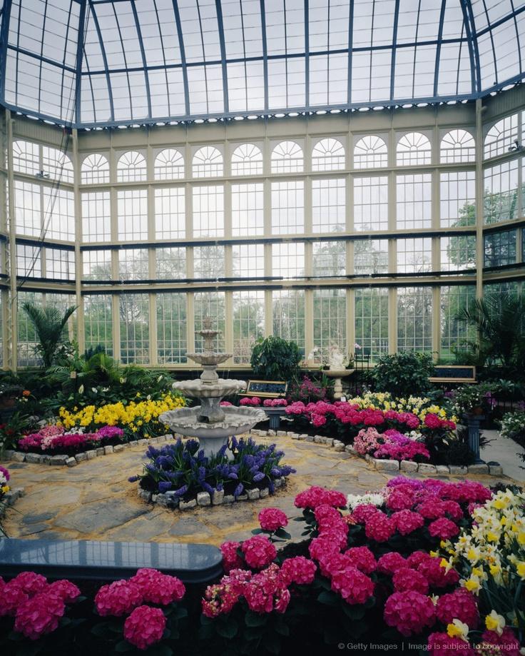 Rawlings Conservatory Botanic Gardens I