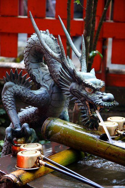 japanese water dragons