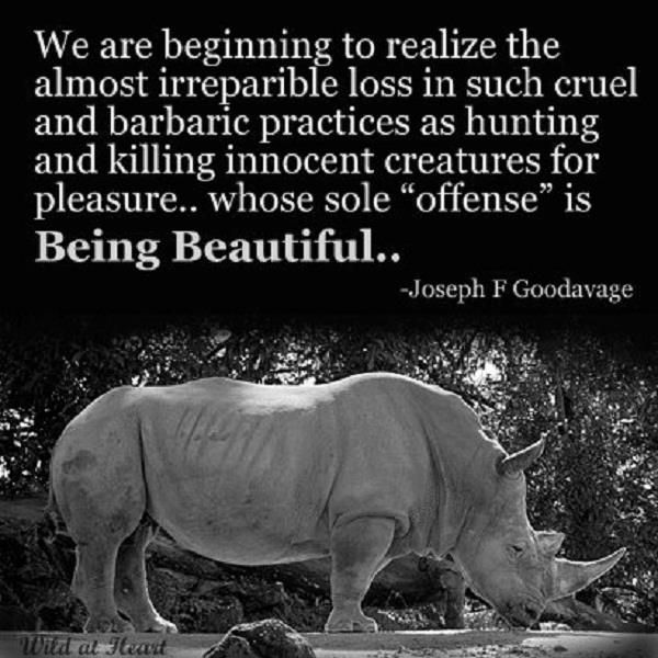 Quotes About Endangered Animals. QuotesGram