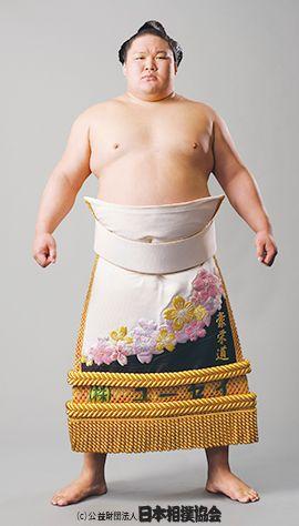 豪栄道豪太郎の画像 p1_40