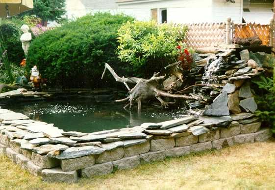 Pin by cylgecko on above ground ponds pinterest for Above ground fish pond ideas