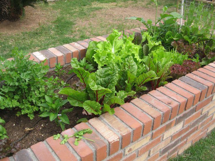 Garden Bed Bricks : Raised garden bed using bricks