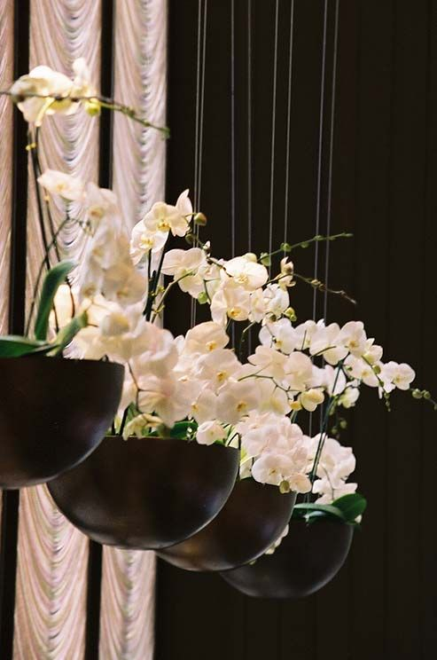 Potted Phalaenopsis orchids in hanging bowls are beautiful and modern—and can be gifted or kept after the reception.