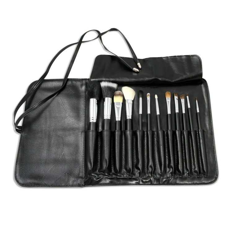 Review: Sedona Lace 12 Piece Professional Brush Set in Pink