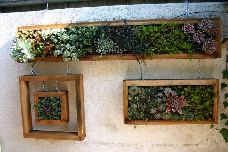 Hanging succulent wall Love Garden Succulents