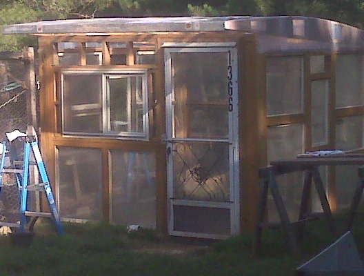 Greenhouse made from old windows we collected.