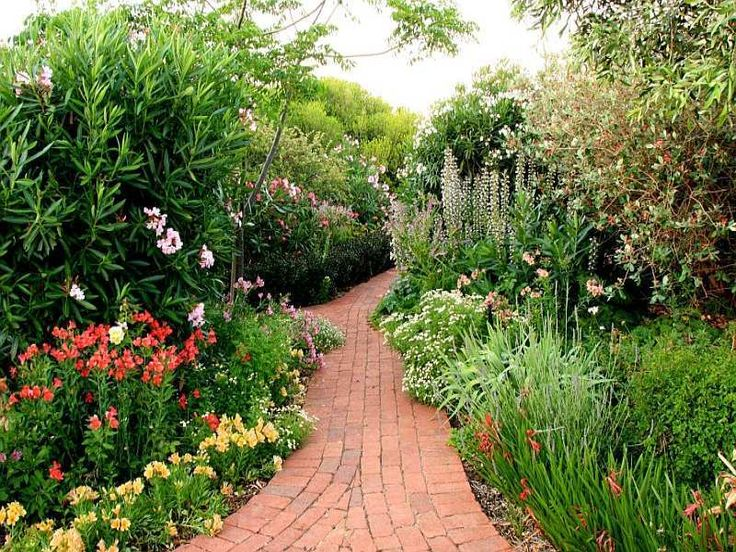 Australian native garden front garden ideas pinterest for Australian native garden design ideas