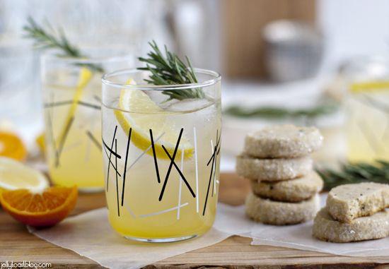 Rosemary Lemon Rhubarb Spritzer Recipe — Dishmaps