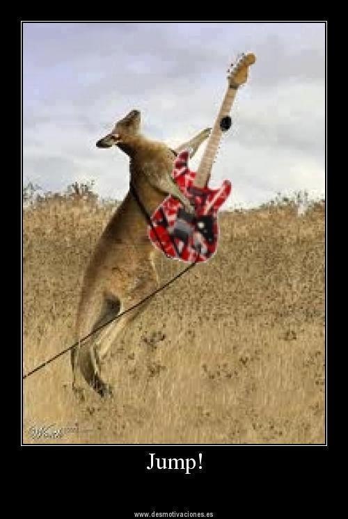 Skippy Van Halen. Jump!