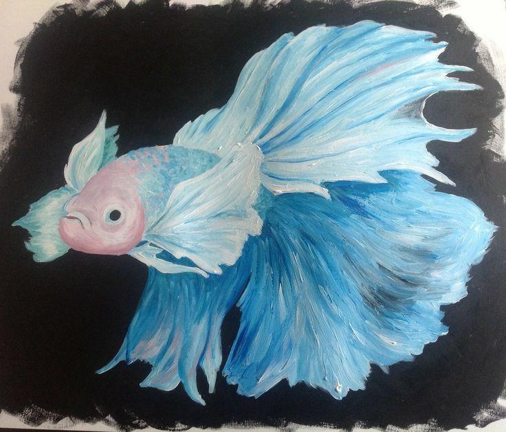 Pin by teri mosby on bettas pinterest for Elephant ear betta fish