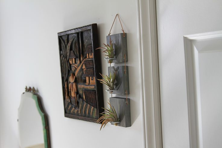 Air plant wall hanging lifestyle decor pinterest for Air plant wall art