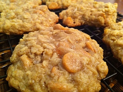 Peanut Butter Coconut Oatmeal Scotchies. Recipe from: Lauren's Latest ...