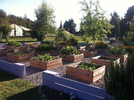 potager bio jardin potager bio et agro cologie pinterest. Black Bedroom Furniture Sets. Home Design Ideas
