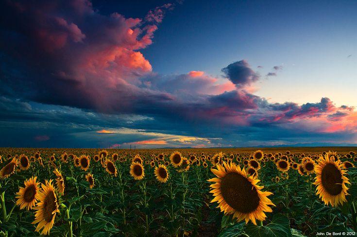 Skies of a Summer Sunset (by John De Bord)