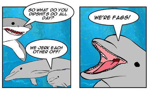 Dolphins Gay 8