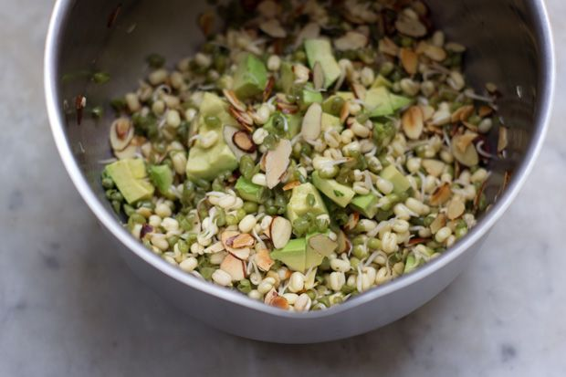 Sprout Salad Recipe @ http://www.101cookbooks.com/archives/sprout ...