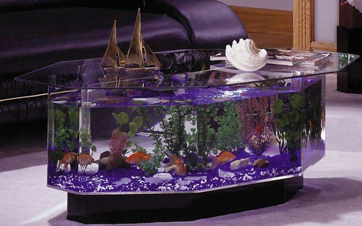 This is Beautiful Fish tanks Pinterest