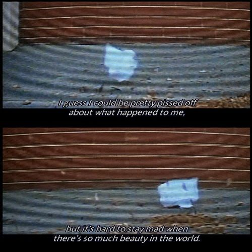 American Beauty | Movie quotes | Pinterest