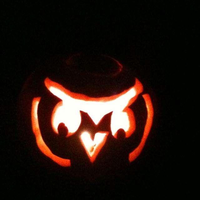 Owl pumpkin carving owls pinterest