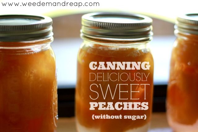 canning-peaches