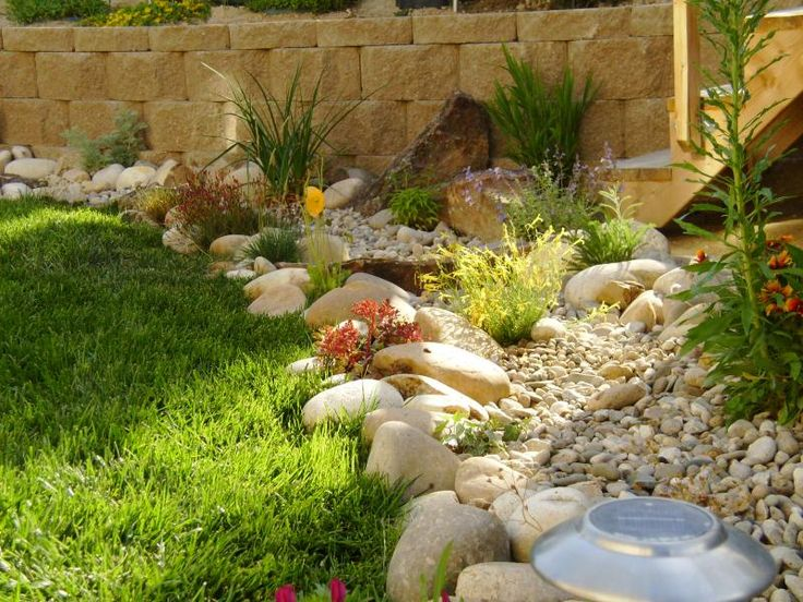 low water garden ideas photograph low water landscap On low water landscape ideas