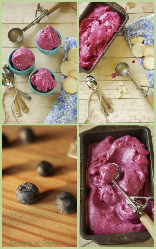 ... mixed berry sorbet 12 tomatoes mixed berry sorbet in ice cream recipes