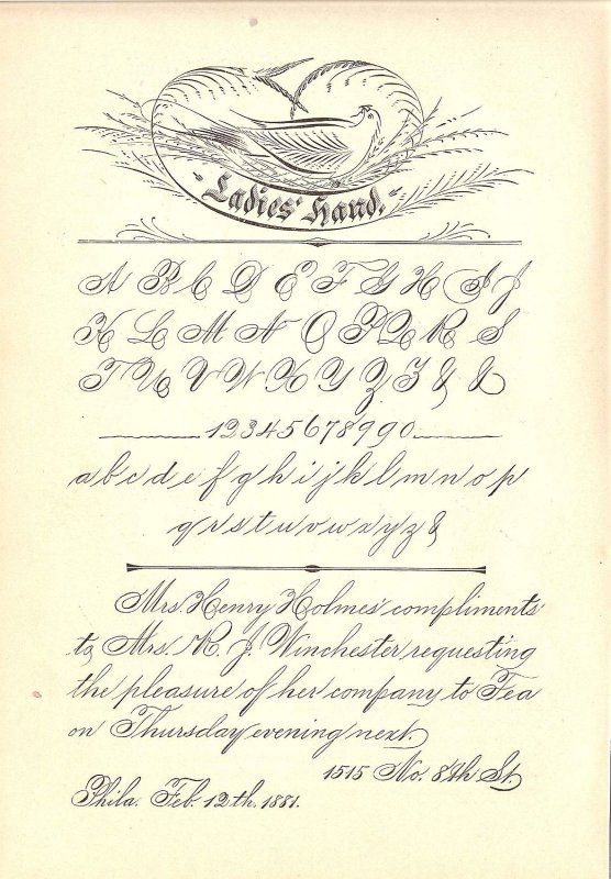 Spencerian ladies hand 02 calligraphy flourishes Handwriting calligraphy
