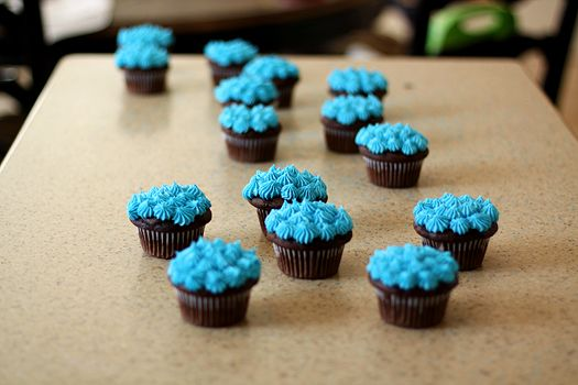 Chocolate Buttermilk Cupcakes with Vanilla Almond Frosting (can use ...