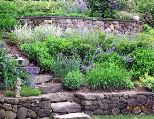 Landscaping Steep Hillside : Traditional landscape slope design pictures remodel decor and ideas
