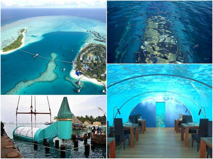 Ithaa Undersea Restaurant Maldives Restaurants Of The