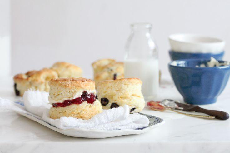 Meyer Lemon & Blueberry Cream Scones | Breads & Rolls | Pinterest