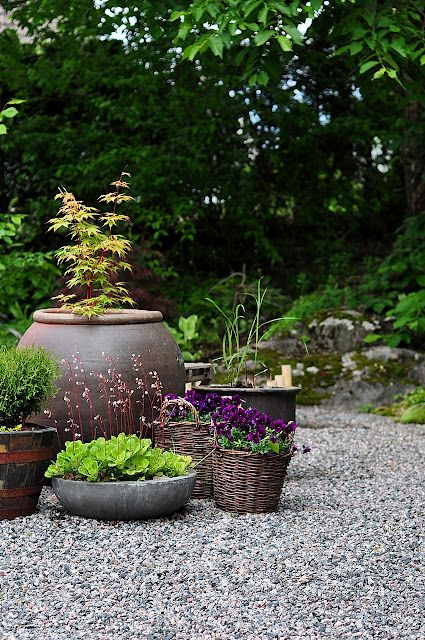 Container garden in the garden pea gravel pinterest for Landscaping with potted plants