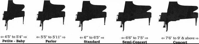 Grand Piano Sizes My Love Of Music Pinterest