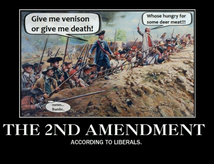 the second amendment and the tyranny 2nd amendment protecting liberty from tyranny engraved ar15                 wwwcustomardustcovercom/2nd-amendment-protecting-liberty-from-tyranny-engraved-ar15-ejection-port-dust-cover--premium-images-inside-outside_p_126html.