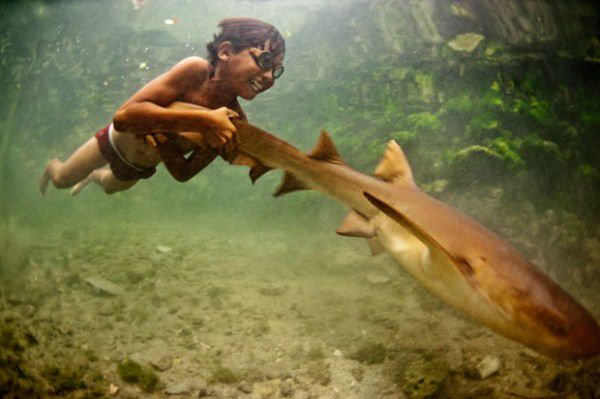 This is Enal. He swims with sharks beneath the Indonesian fishing community he's a part of.
