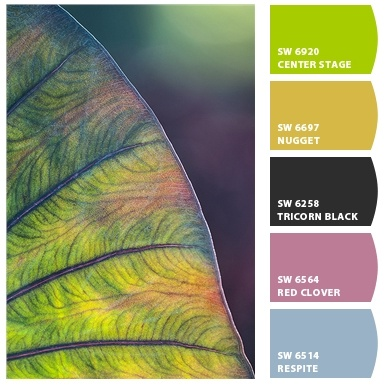 Tropical pastels (made with Sherwin-Williams Chip It tool and one of ...