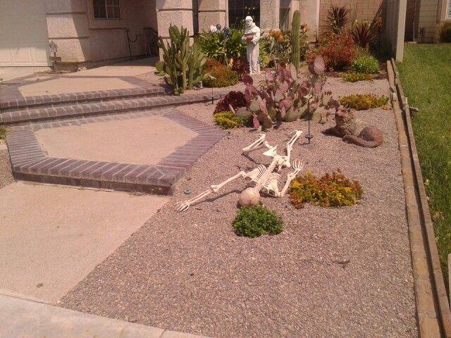 front yard desert landscaping desert landscaping pinterest. Black Bedroom Furniture Sets. Home Design Ideas