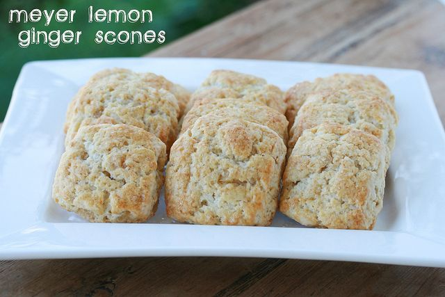Lemon Ginger Scones - Meesh I'm hoping this recipe compares to yours ...