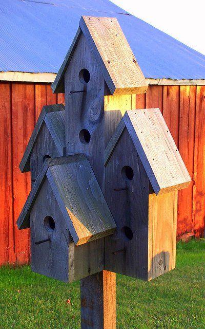 ★ BIRD HOUSES ★