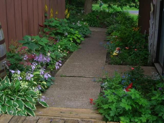 Easy care gardens bing images gardening pinterest for Easy care garden plants