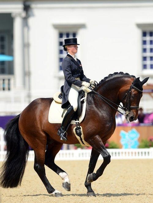 strength, education, perfection #Dressage #glenlyon pony club