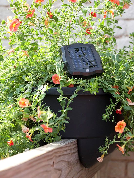 Grow an Instant Garden using plastic planters which can be wall/railing hung. They will also disguise the solar light panel.