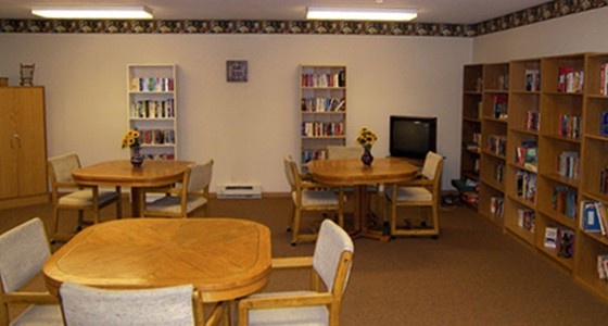 senior apartments for rent anoka mn