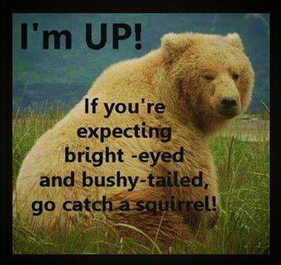 I'm Up!!