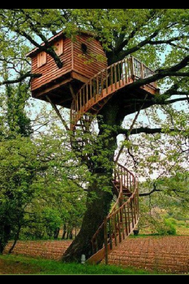 Best Spiral Staircase Treehouse Ups And Downs Pinterest 400 x 300