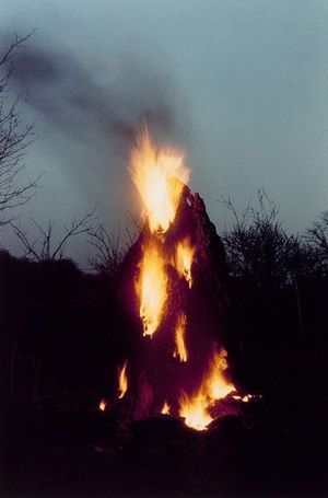 Ana Mendieta - Silueta works in Iowa and Oaxaca Mexico 1976