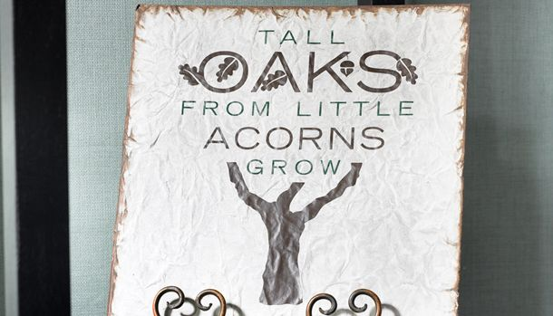 tall oaks grow from little acorns essay