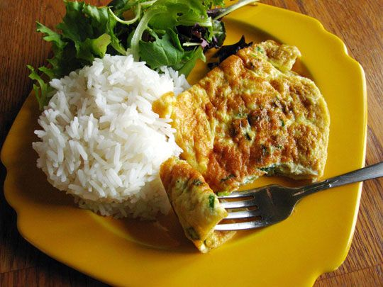 Thai Style omlet   2 eggs  1/2 teaspoon fish sauce  2 green onions  1 tablespoon vegetable oil    add ground pork or chicken if desired