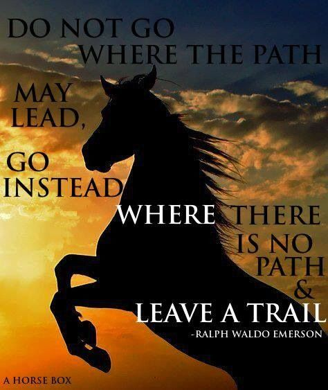 inspirational quotes for horse lovers quotesgram