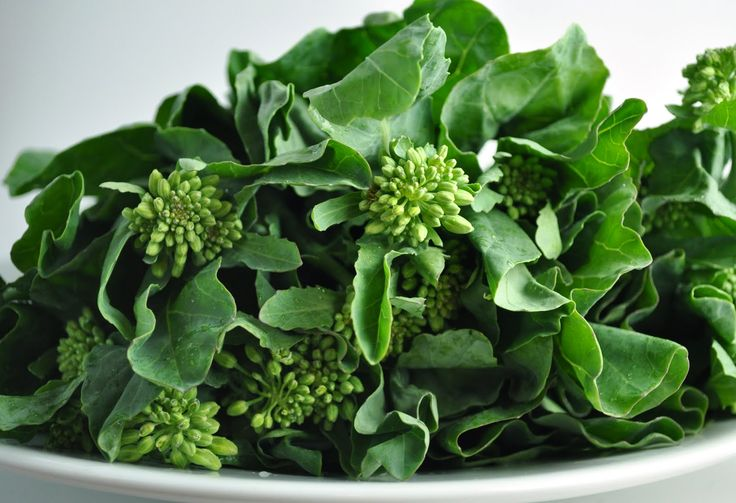 Gai Lan (Chinese broccoli) | June is National Fresh Fruit & Vegetable ...